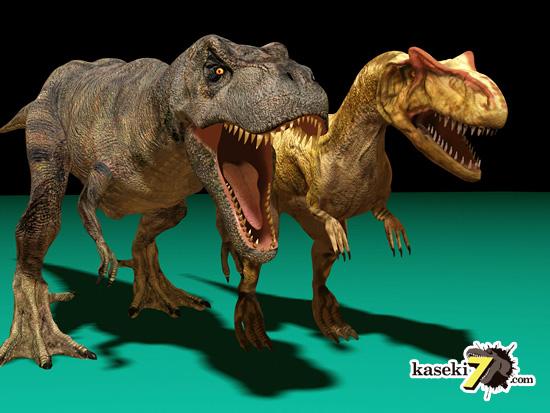 アロサウルス登場 いけません。ティラノサウルスの頭部は横に分厚いことで知られます。アロサウルス等