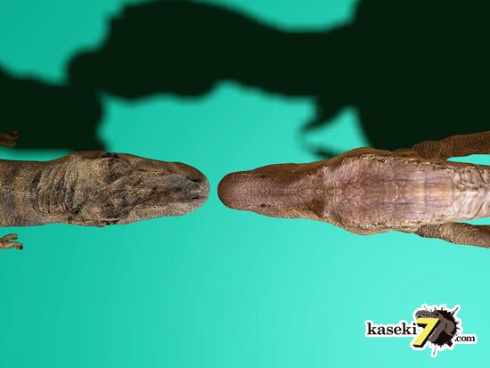ティラノサウルスとスピノサウルスを上から見てみる