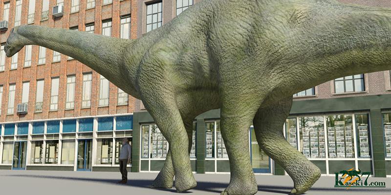 カマラサウルスと人間